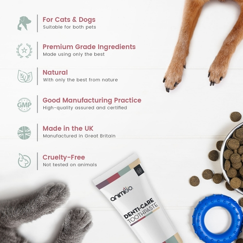 Denti Care Toothpaste for Cats and Dogs For Wholesale