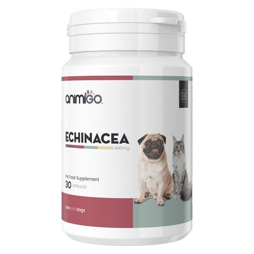 Animigo Echinacea for Dogs & Cats 30 Capsules for Wholesale