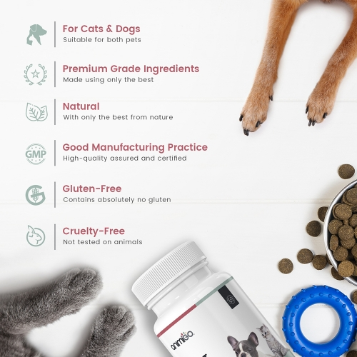 Heart Health for Cats and Dogs For Wholesale